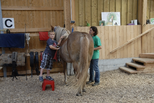 Bilder  zu Therapiereiten - Workshop August 2010